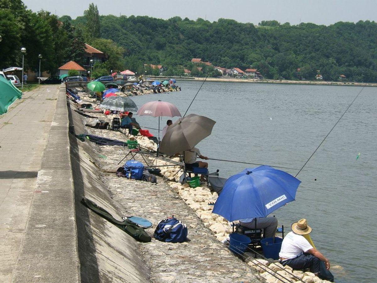 Дунав код Голупца - рибарски рај